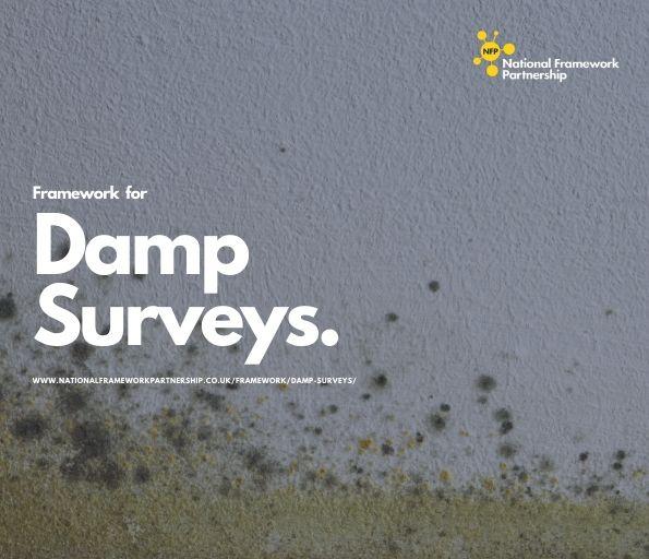 Damp Surveys Framework